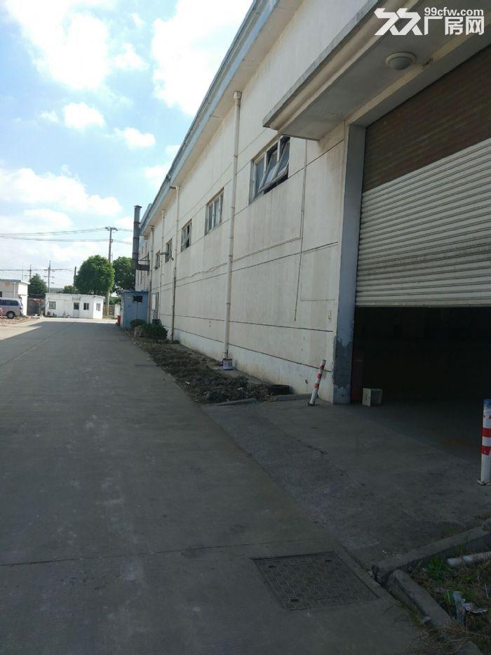 厂房直招,嘉定徐行新出标准全单层厂房1000平,层高8米,场地空间大-图(1)