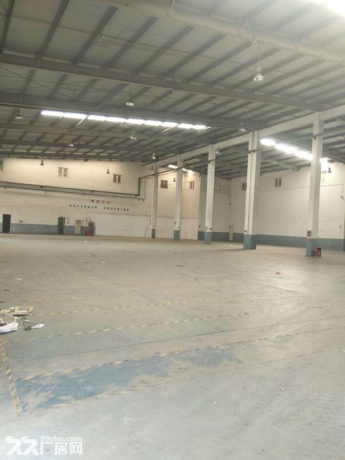 厂房直招,嘉定徐行新出标准全单层厂房1000平,层高8米,场地空间大-图(2)