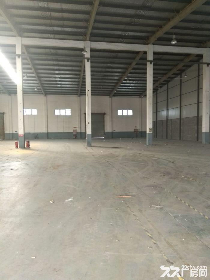 厂房直招,嘉定徐行新出标准全单层厂房1000平,层高8米,场地空间大-图(3)