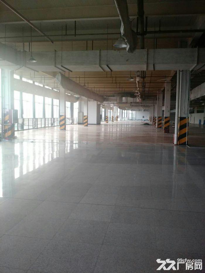 机场高速下8000方可以分割可以分割有食堂宿舍-图(5)