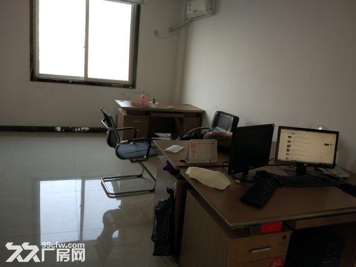 出售经济开发区51亩厂房非诚勿扰-图(3)