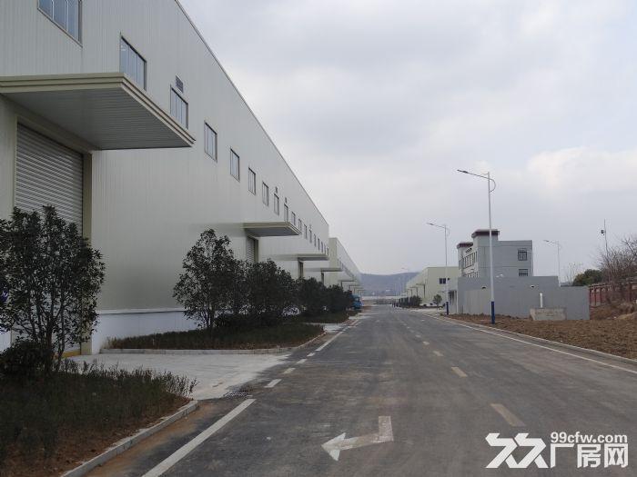 蚌埠港物流园3800平米仓库招租-图(1)