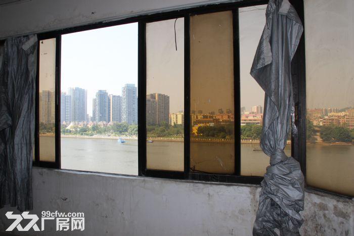 近广州市市中心400方带大货梯厂房仓库月租仅16元每平米-图(3)