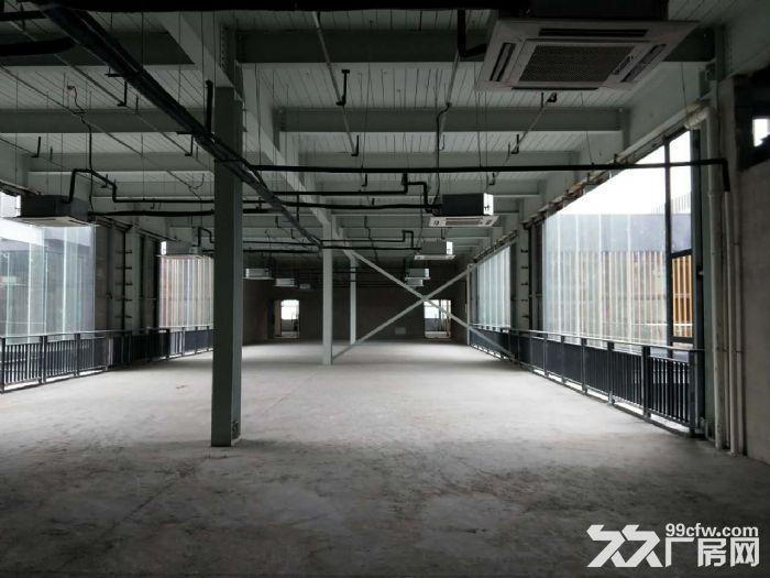 园区350方出租,适合服装设计、摄影、办公等-图(2)