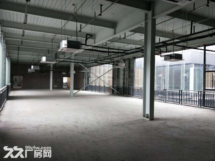 园区350方出租,适合服装设计、摄影、办公等-图(1)