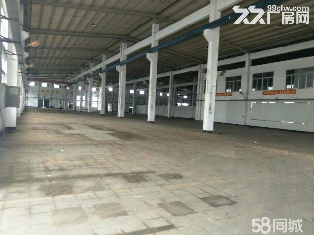 东升8米高钢构4000平方厂房出租-图(1)