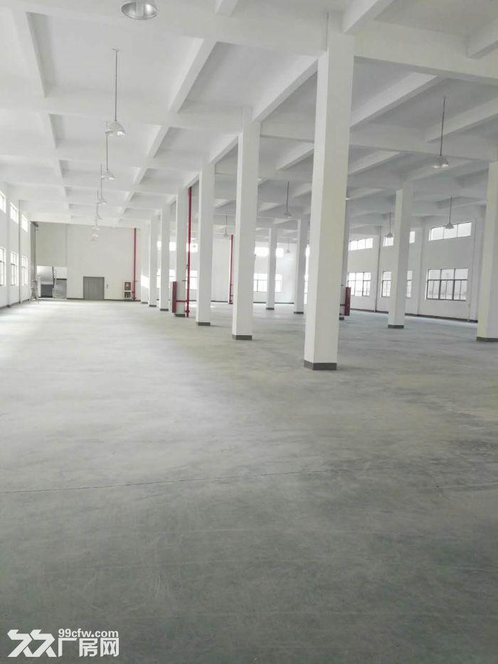 全新标准厂房出租,单层1800方,双边大货梯-图(1)