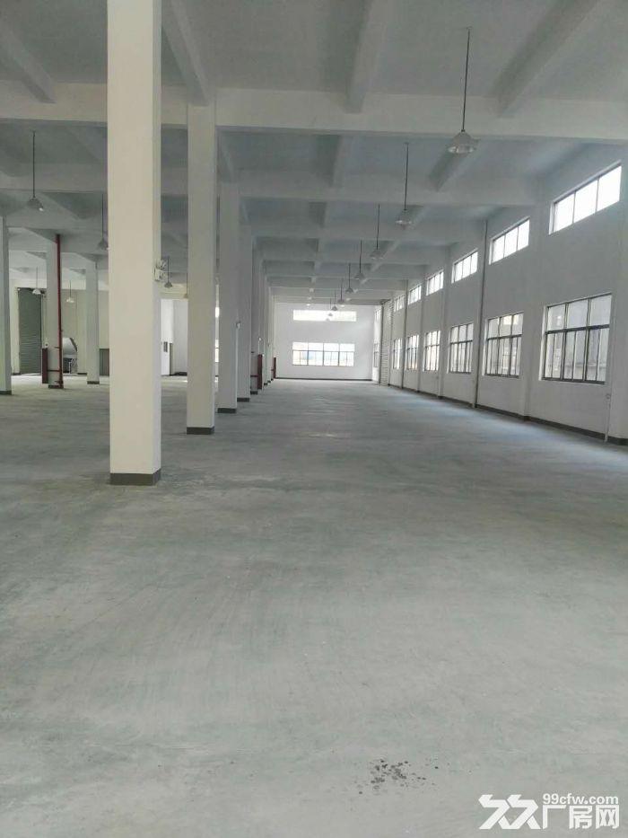 全新标准厂房出租,单层1800方,双边大货梯-图(2)