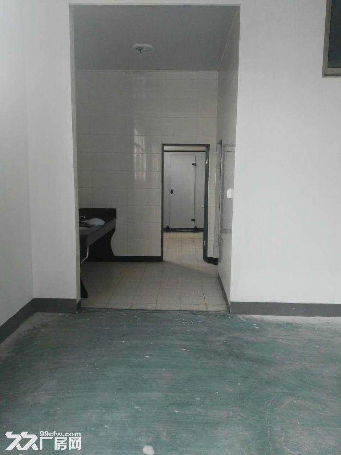 全新标准厂房出租,单层1800方,双边大货梯-图(6)
