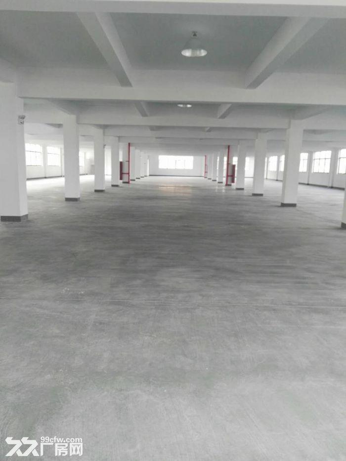 整层2000方厂房出租,适合仓储办公、淘宝、服装等-图(1)