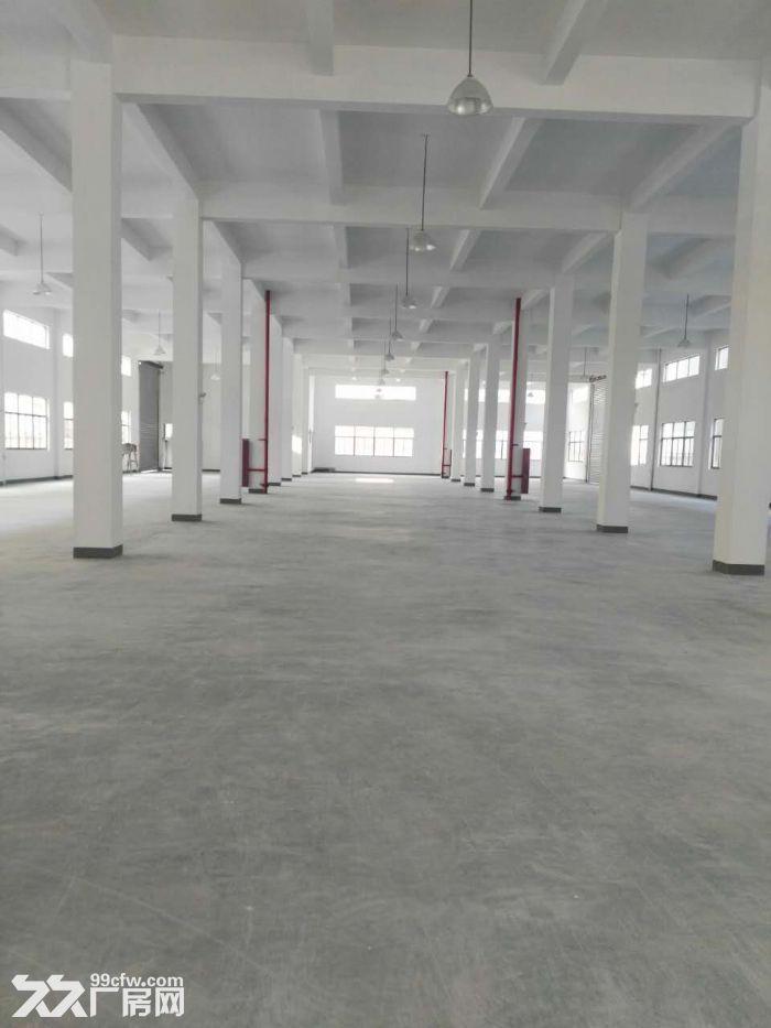整层2000方厂房出租,适合仓储办公、淘宝、服装等-图(4)