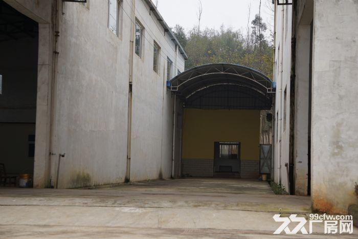 独栋厂房整体出租,也可合作,可生产,研发,交通便利。-图(5)