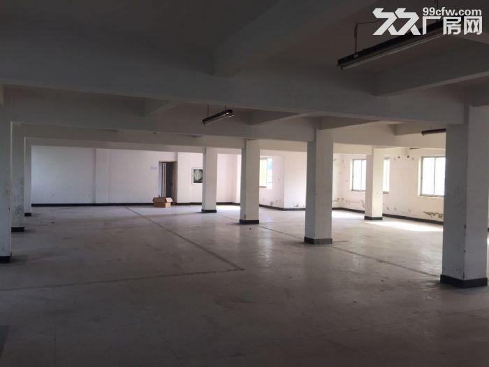标准厂房温岭城西街道-图(1)