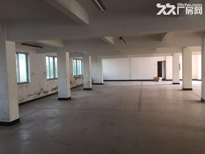 标准厂房温岭城西街道-图(2)