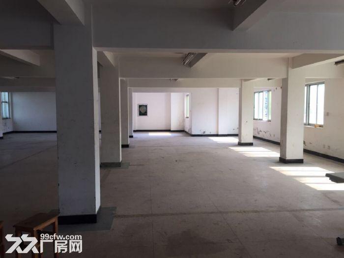 标准厂房温岭城西街道-图(3)