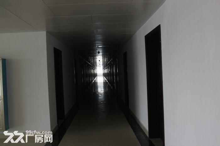 (出租)1600~5000大面积厂房招租(非中介)-图(6)