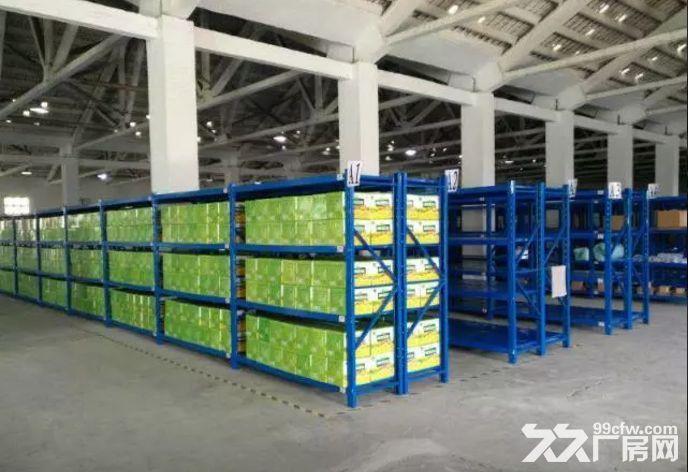 广州市白云区专业托管仓库和专业运输车出租-图(5)