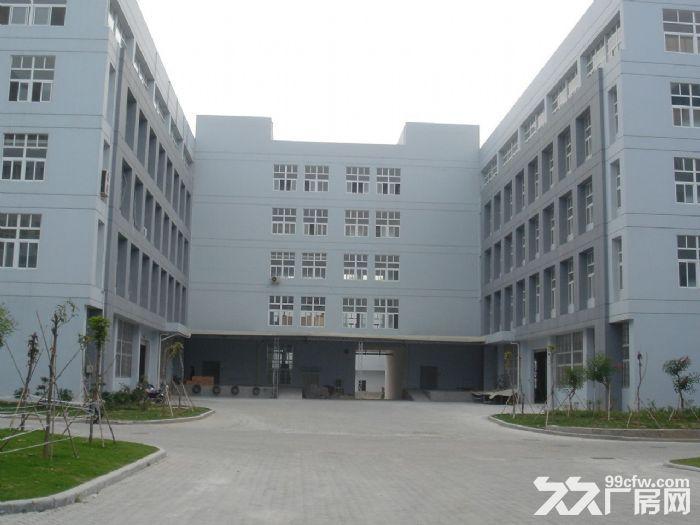 老余杭义桥工业园22500方厂房出租-图(1)