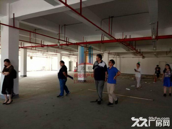科学城800方1300方厂房招租-图(4)