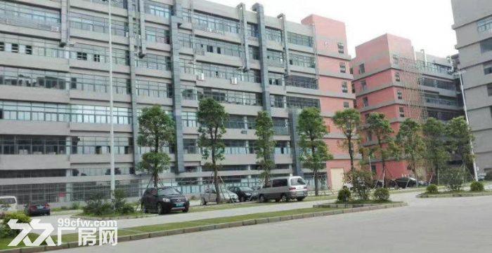 (出售)惠州地皮出售!淡水工业用地皮300平起售!-图(7)