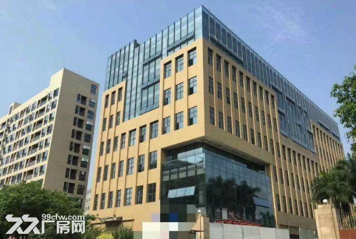 (出售)惠州地皮出售!淡水工业用地皮300平起售!-图(8)