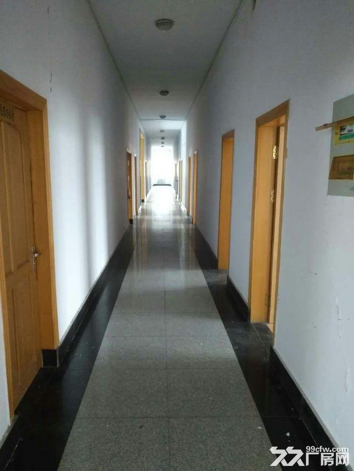 江北南京路厂房出租,6.5米举架车间,可提供电厂工业蒸汽-图(3)