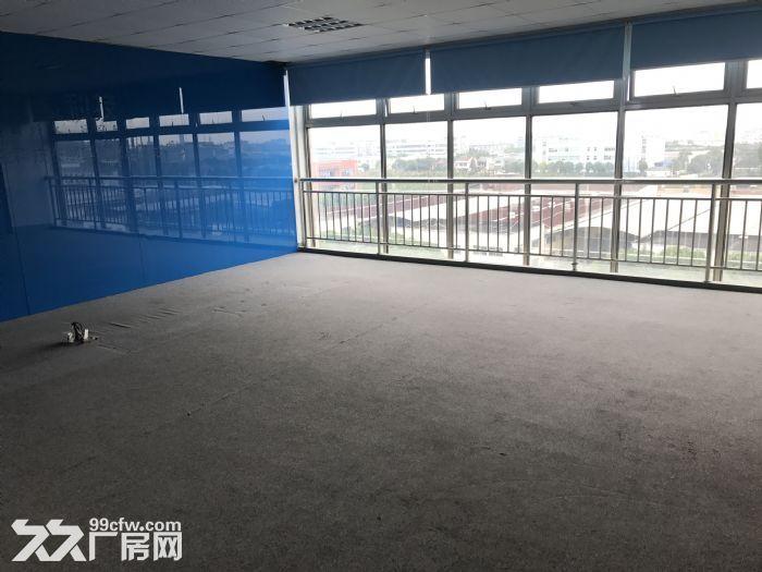 松江厂房出租,1288平精装修,三证全0.85价格可谈-图(2)