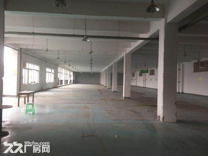 茶园标准厂房、仓库出租-图(7)
