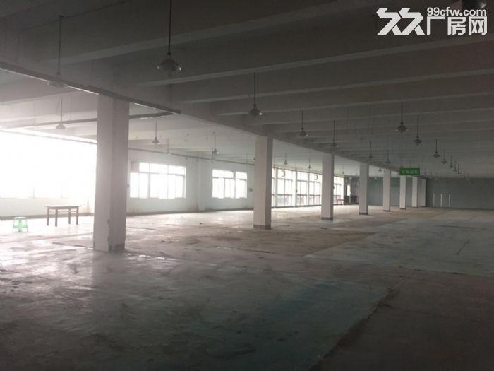 茶园标准厂房、仓库出租-图(6)
