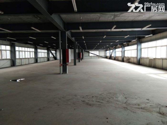 出租濮阳汽车产业综合商务园稀缺优质厂房库房仓库-图(3)