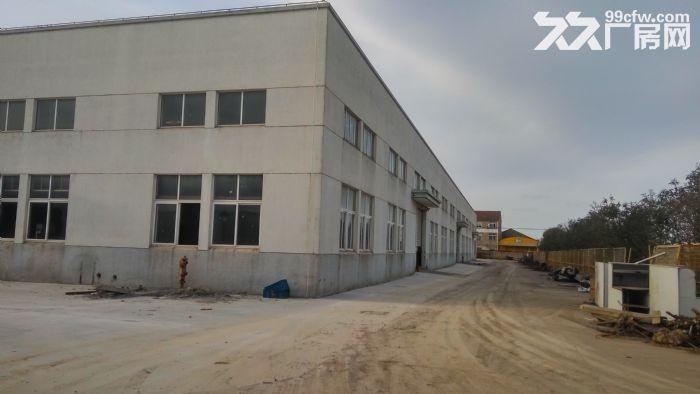 独门独院9800平标准厂房价格1.1元-图(2)