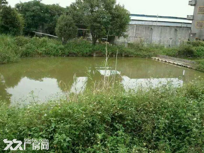 [价格美丽]出租6亩地皮\配备水电\环境舒适\交通便利-图(1)