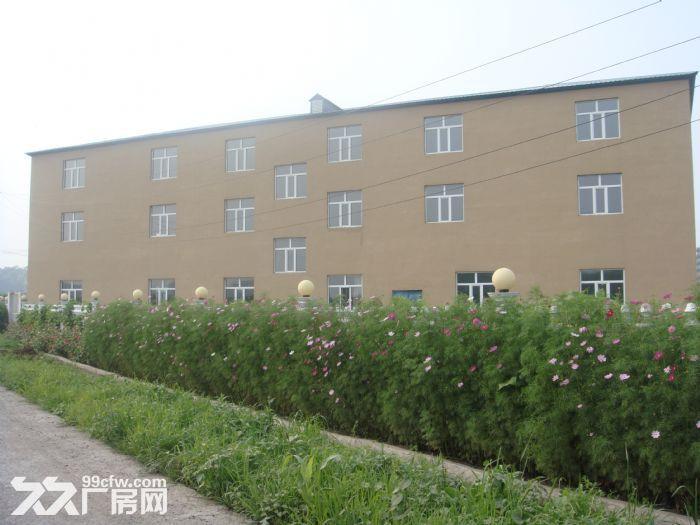 哈尔滨双城市有新建现代化厂房急售成本价以供暖-图(5)