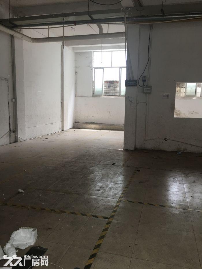 仓库、办公楼、厂房出租-图(2)