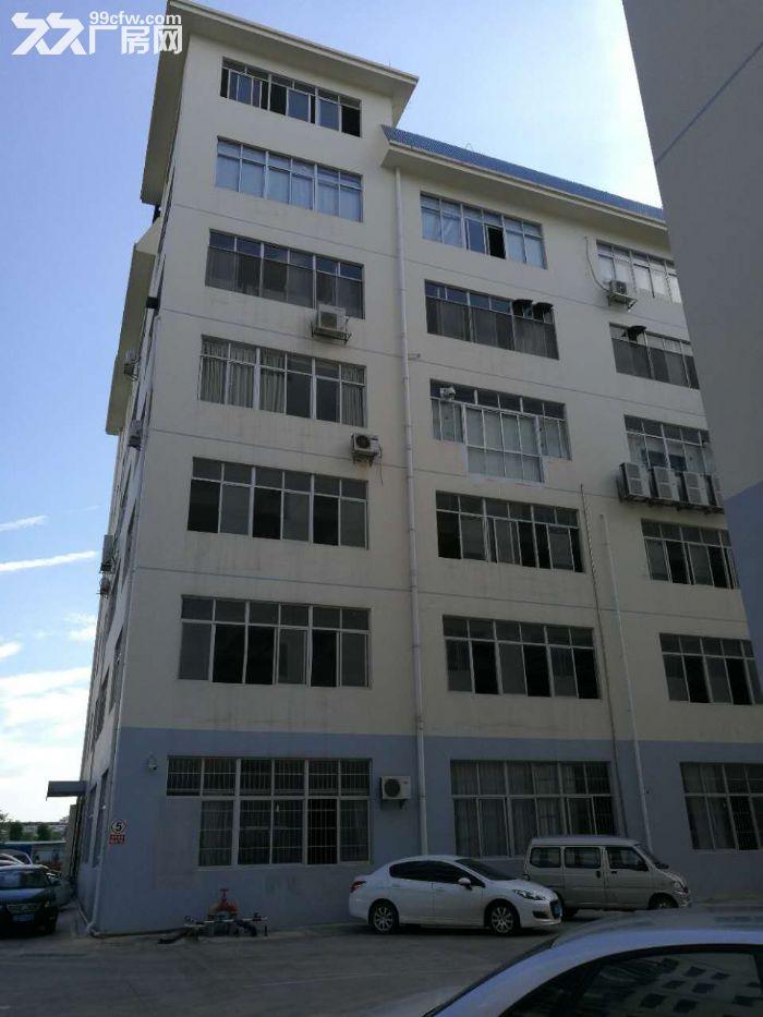 出售江南沙井标准厂房50年产权即买即可进驻-图(6)