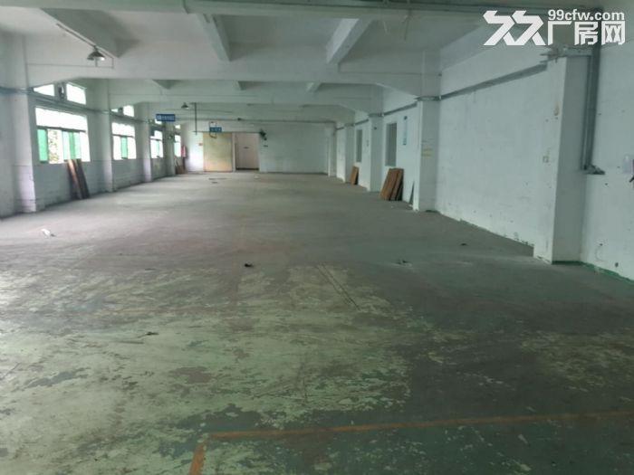 (刚搬空)塘厦高速出口附近楼上厂房分租600平方-图(2)