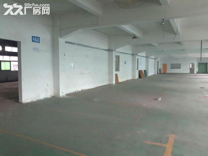 (刚搬空)塘厦高速出口附近楼上厂房分租600平方-图(3)