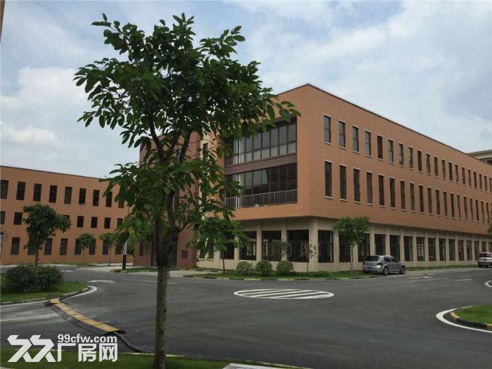 品质独栋厂房《框架轻钢独栋1000平米起租售》-图(2)