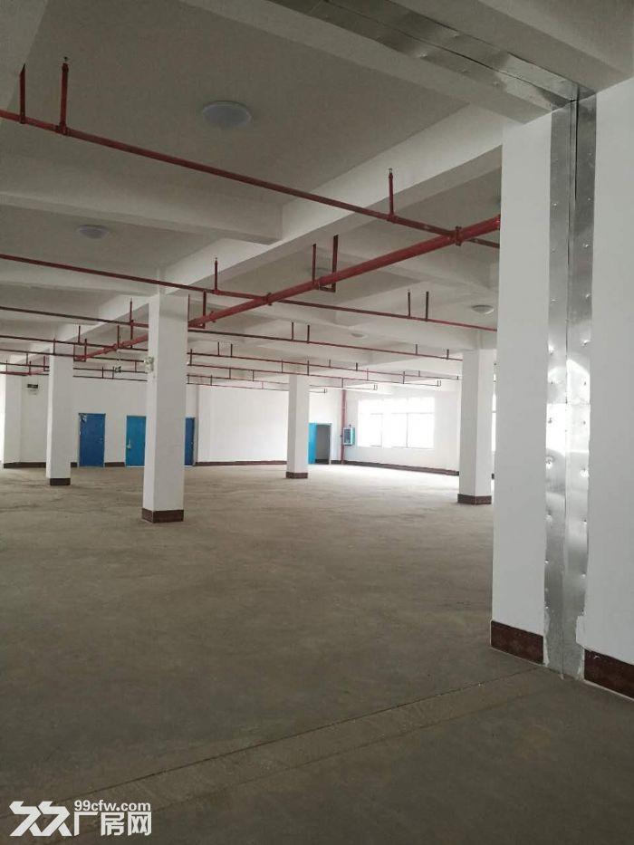 南宁高新技术开发区14000平标新厂房出售,交通方便可进大车-图(1)