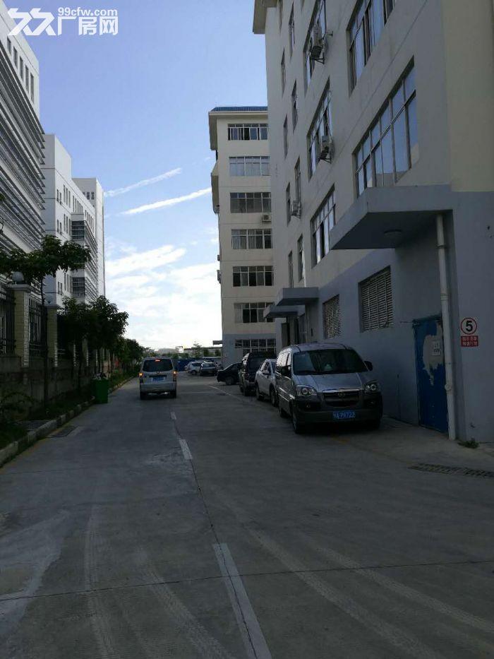 南宁高新技术开发区14000平标新厂房出售,交通方便可进大车-图(4)