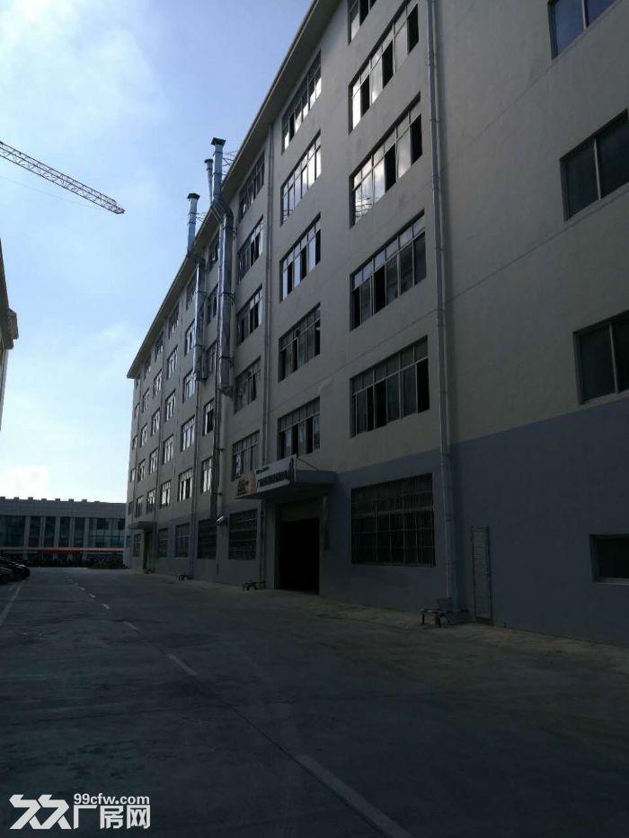 南宁高新技术开发区14000平标新厂房出售,交通方便可进大车-图(6)