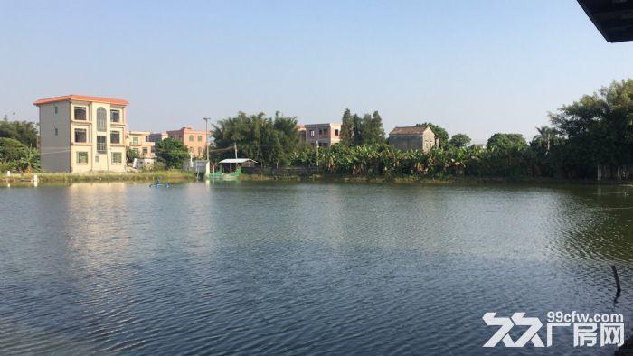 最新南沙自贸区宅基地,1000方-图(1)