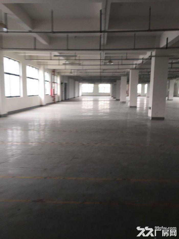 赵巷崧盈路12500平方独栋多层厂房仓库出租,大小可分割,有产证和货梯-图(2)