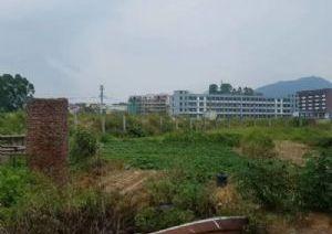 出售郊尾工业园区厂房占地面积约60亩