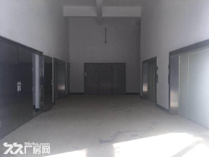观山湖区厂房出租出售-图(5)