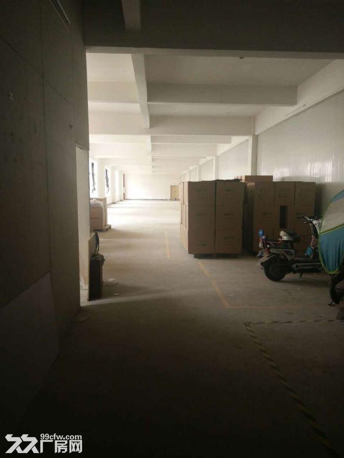 二楼500平米仓库(厂房)出租-图(1)