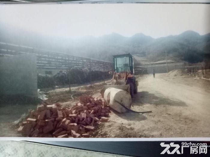 养殖理想基地以养驴为主-图(7)