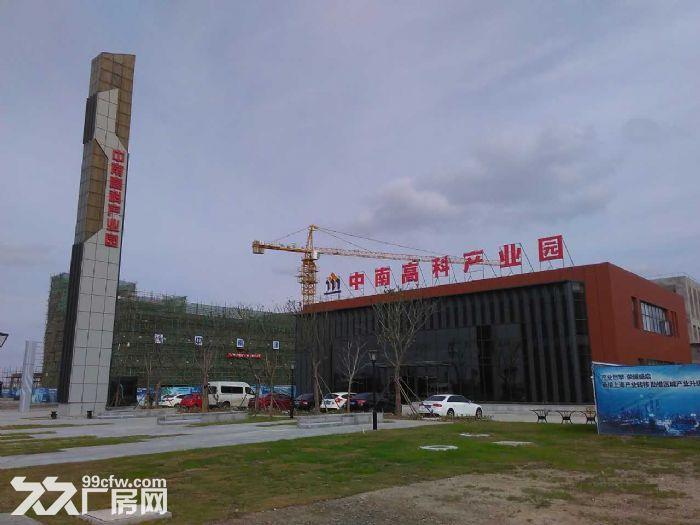 顺德杏坛全新3层厂房,层高8.1米,50年产权-图(2)