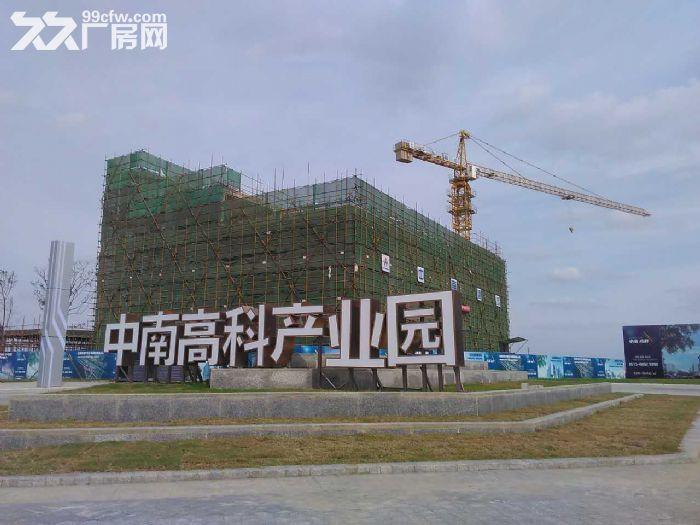 顺德杏坛全新3层厂房,层高8.1米,50年产权-图(3)