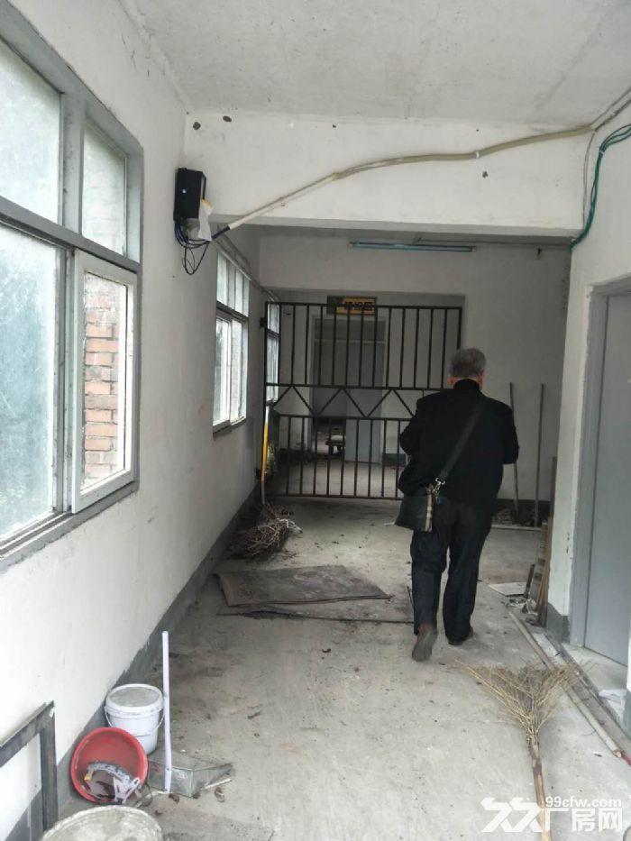 南山1400平米标准仓库出租-图(7)